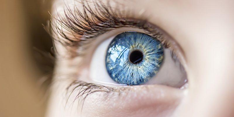 insightful look blue eye boy